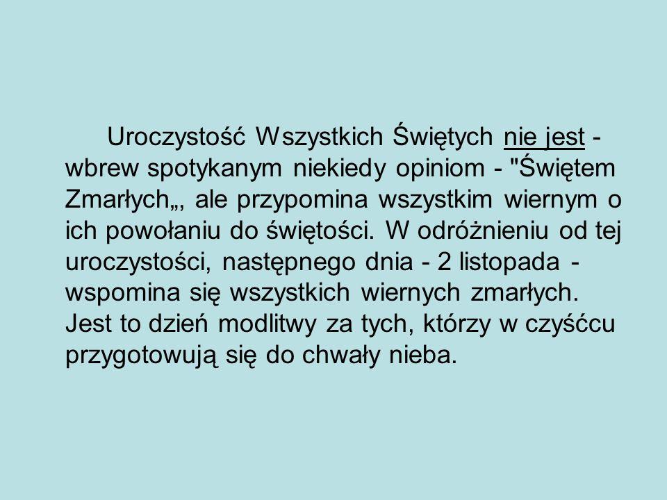 Bibliografia: http://www.netkobiety.pl http://www.gazetawroclawska.pl/artykul/1032753,jak-w-roznych- kulturach-wspomina-sie-zmarlych,id,t.html http://www.deon.pl wikipedia http://odeszli.ox.pl