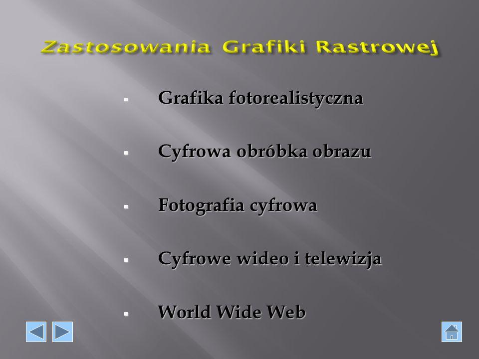  Grafika fotorealistyczna  Cyfrowa obróbka obrazu  Fotografia cyfrowa  Cyfrowe wideo i telewizja  World Wide Web