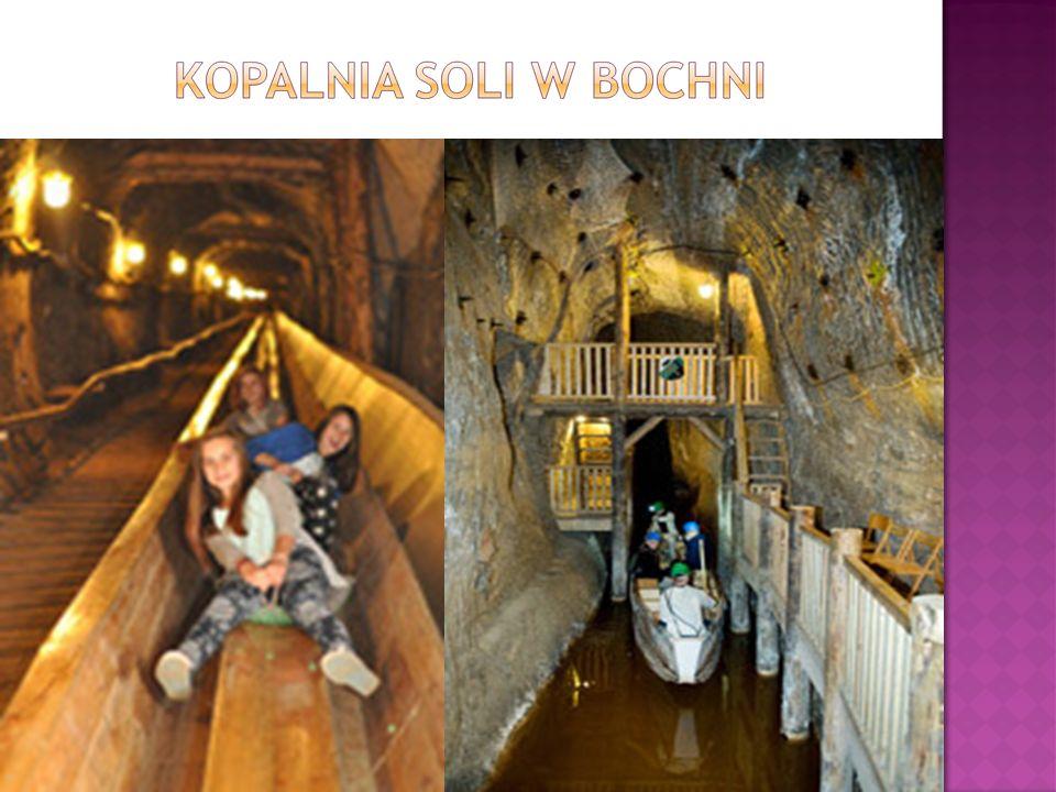  Kopalnia Soli Bochnia (od czerwca 2013 r. na liście UNESCO) to najstarsza na ziemiach polskich kopalnia soli kamiennej. Jej początki sięgają 1248 r.