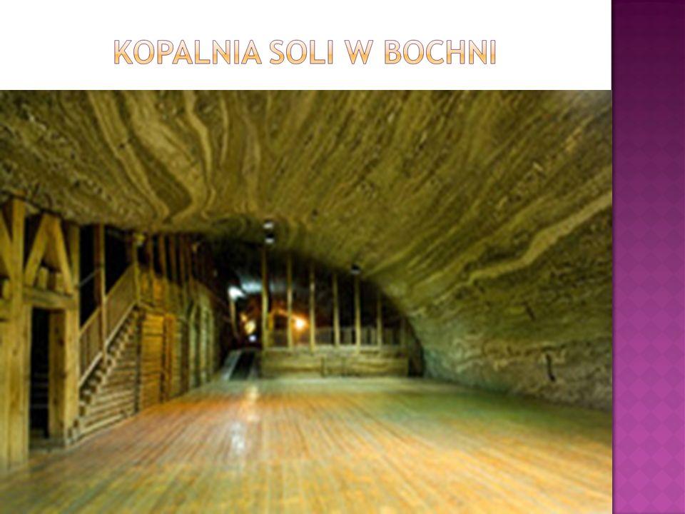  Kopalnia Soli Bochnia (od czerwca 2013 r.