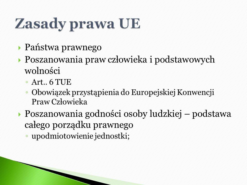  Zasada wykładni jednolitej  Zasada wykładni autonomicznej  Zasada wykładni efektywnej  Zasada wykładni zgodnej z prawami podstawowymi  Zasada wykładni zgodnej z prawem międzynarodowym  Zasada wykładni zgodnej z zasadami prawa unijnego