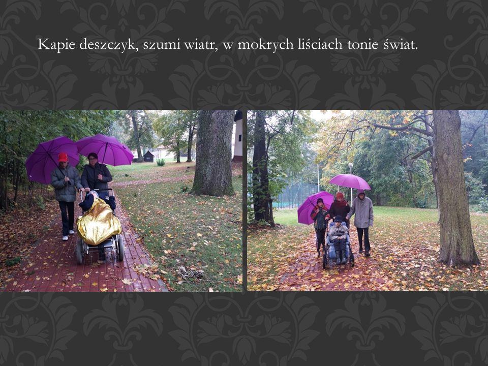 Kapie deszczyk, szumi wiatr, w mokrych liściach tonie świat.