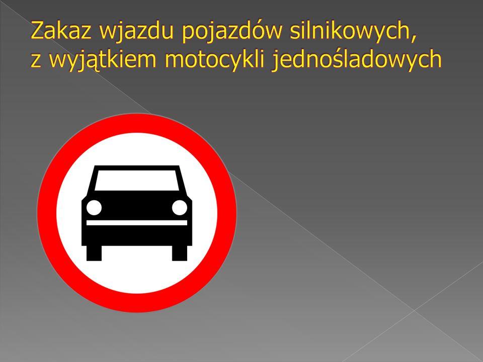 Znak ten oznacza zakaz zatrzymania pojazdu.