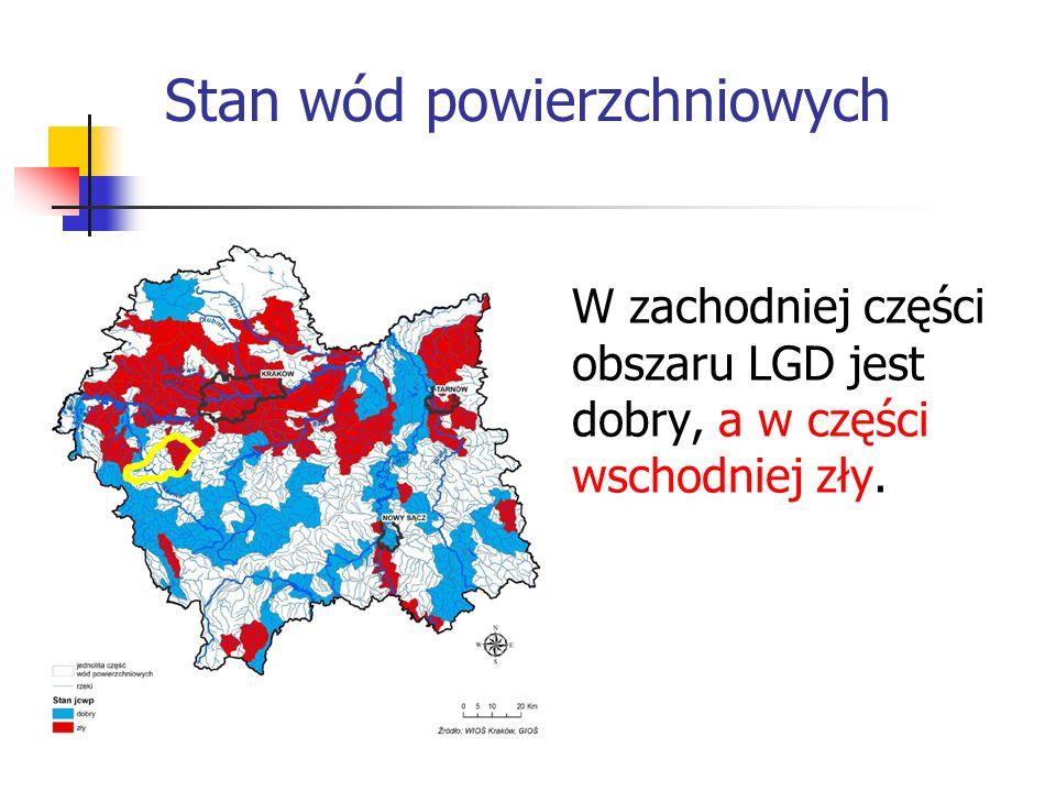 Stan wód powierzchniowych W zachodniej części obszaru LGD jest dobry, a w części wschodniej zły.