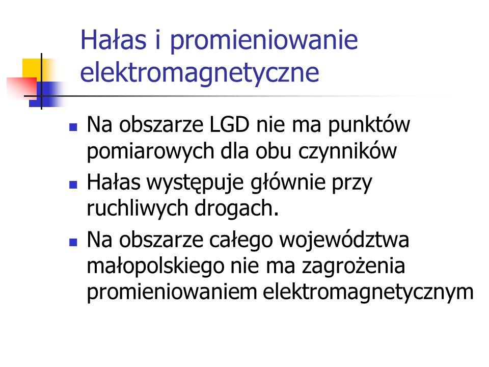 Hałas i promieniowanie elektromagnetyczne Na obszarze LGD nie ma punktów pomiarowych dla obu czynników Hałas występuje głównie przy ruchliwych drogach.