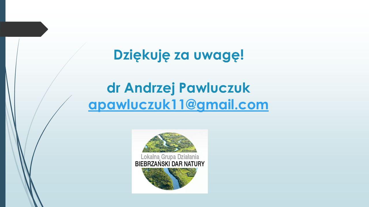 Dziękuję za uwagę! dr Andrzej Pawluczuk apawluczuk11@gmail.com apawluczuk11@gmail.com