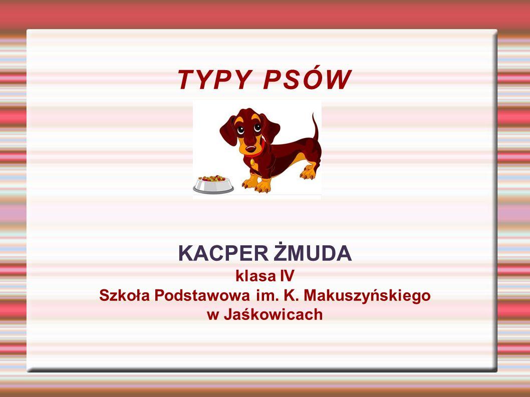 TYPY PSÓW KACPER ŻMUDA klasa IV Szkoła Podstawowa im. K. Makuszyńskiego w Jaśkowicach