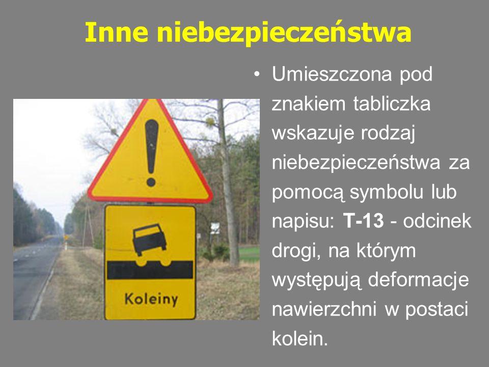 Inne niebezpieczeństwa Umieszczona pod znakiem tabliczka wskazuje rodzaj niebezpieczeństwa za pomocą symbolu lub napisu: T-13 - odcinek drogi, na któr