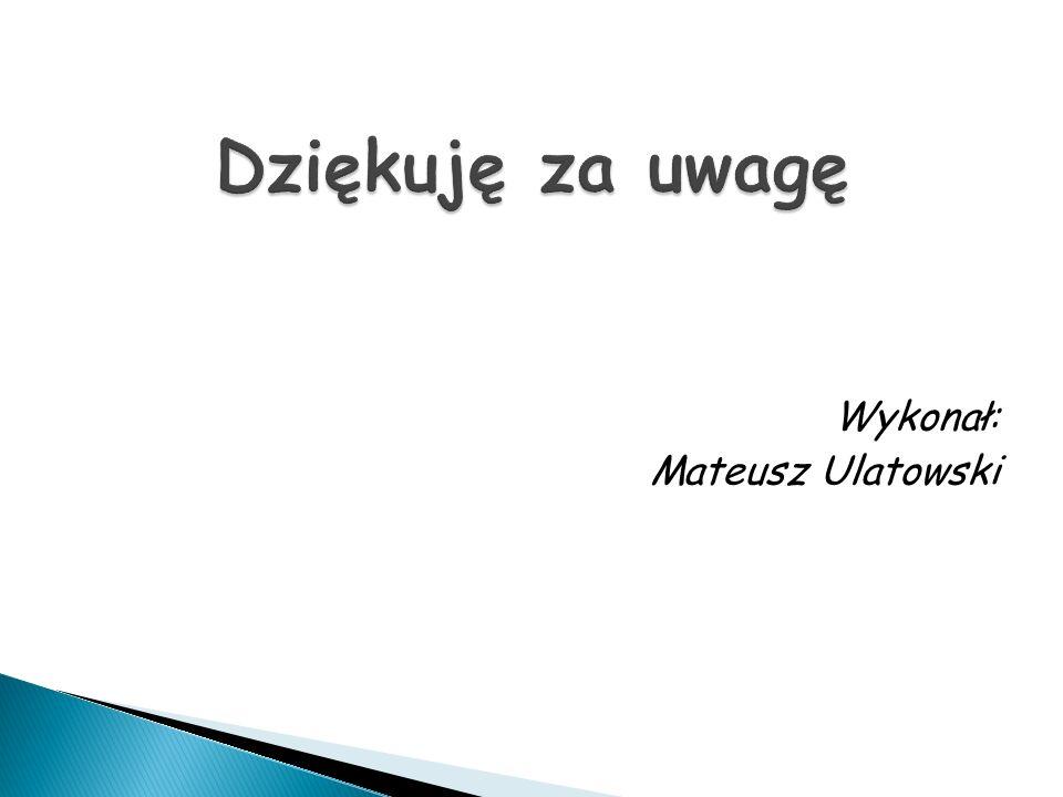 Wykonał: Mateusz Ulatowski