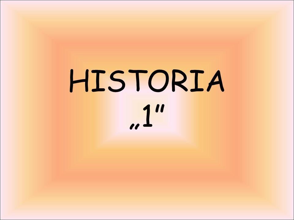 "HISTORIA ""1"""