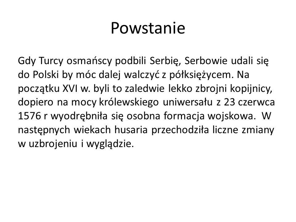 Powstanie Gdy Turcy osmańscy podbili Serbię, Serbowie udali się do Polski by móc dalej walczyć z półksiężycem. Na początku XVI w. byli to zaledwie lek