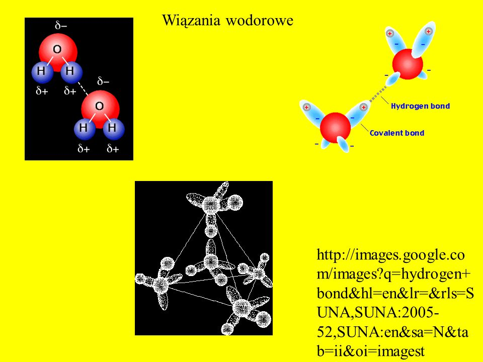 http://images.google.co m/images?q=hydrogen+ bond&hl=en&lr=&rls=S UNA,SUNA:2005- 52,SUNA:en&sa=N&ta b=ii&oi=imagest Wiązania wodorowe