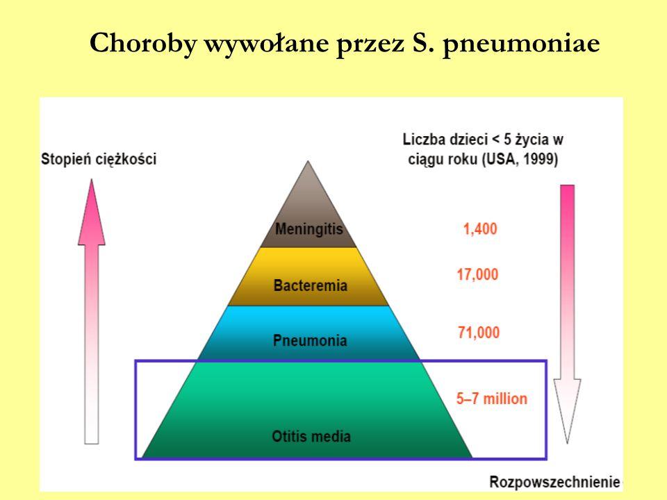 Choroby wywołane przez S. pneumoniae