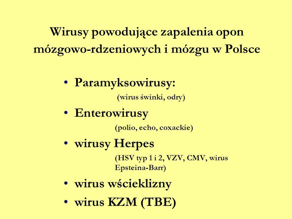 Wirusy powodujące zapalenia opon mózgowo-rdzeniowych i mózgu w Polsce Paramyksowirusy:  (wirus świnki, odry) Enterowirusy  (polio, echo, coxackie) w