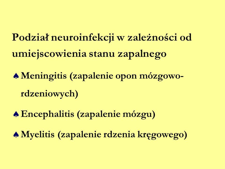 Podział neuroinfekcji w zależności od umiejscowienia stanu zapalnego  Meningitis (zapalenie opon mózgowo- rdzeniowych)  Encephalitis (zapalenie mózg