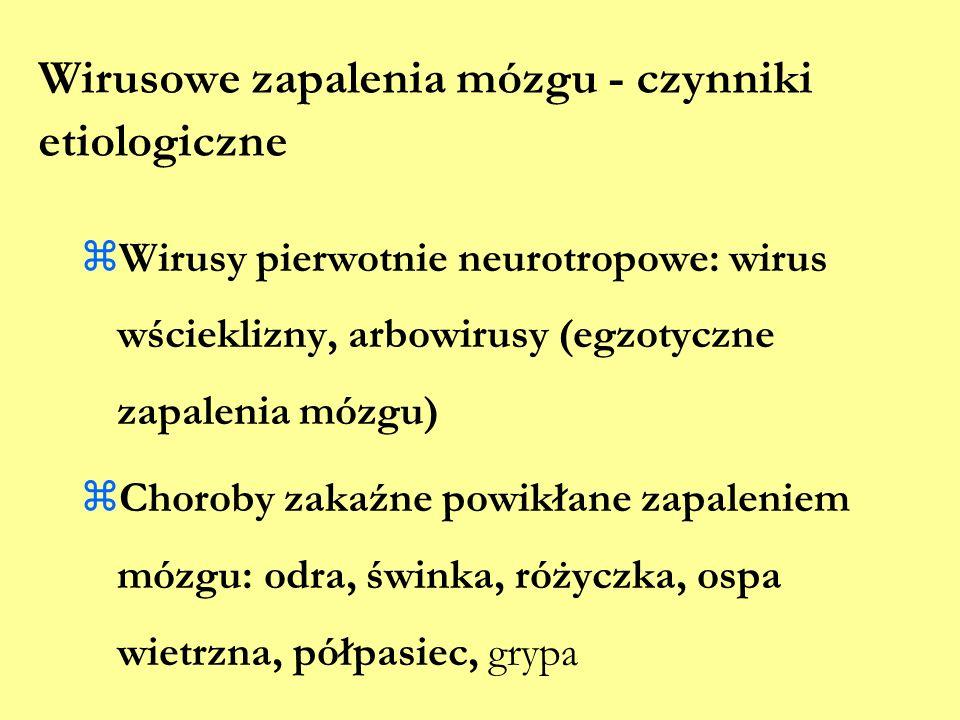 Wirusowe zapalenia mózgu - czynniki etiologiczne  Wirusy pierwotnie neurotropowe: wirus wścieklizny, arbowirusy (egzotyczne zapalenia mózgu)  Chorob