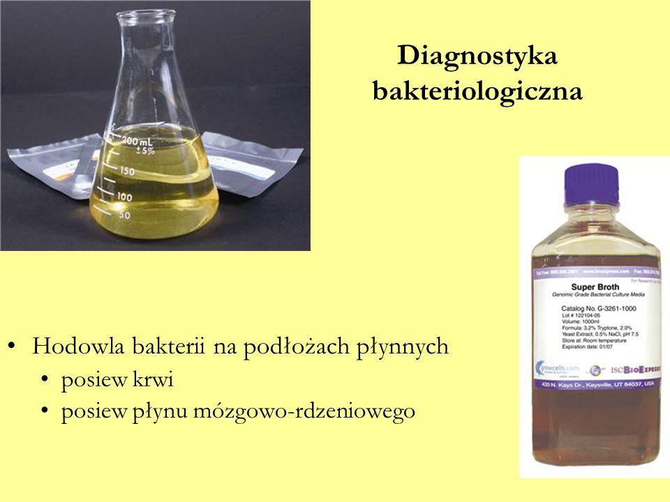 Diagnostyka bakteriologiczna Hodowla bakterii na podłożach płynnych posiew krwi posiew płynu mózgowo-rdzeniowego