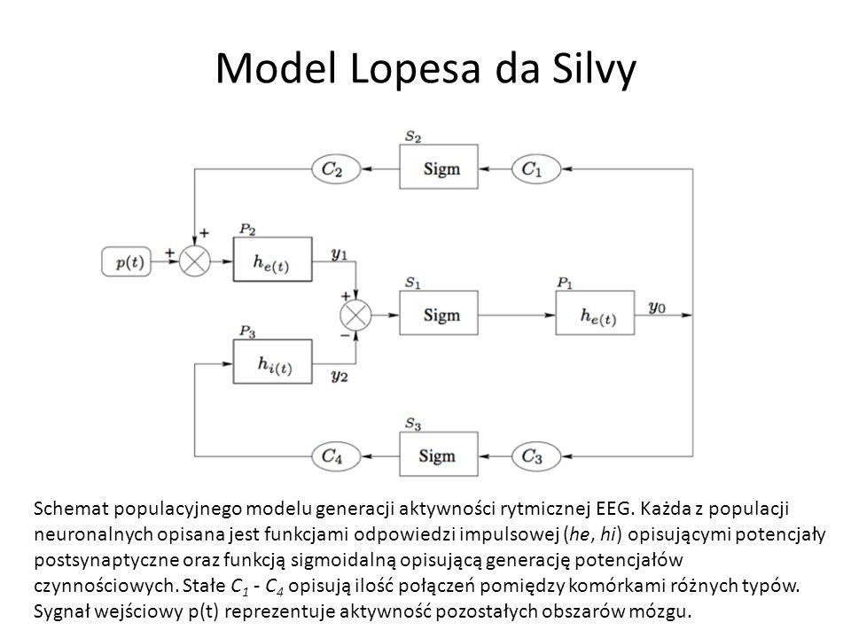 Model Lopesa da Silvy Schemat populacyjnego modelu generacji aktywności rytmicznej EEG. Każda z populacji neuronalnych opisana jest funkcjami odpowied