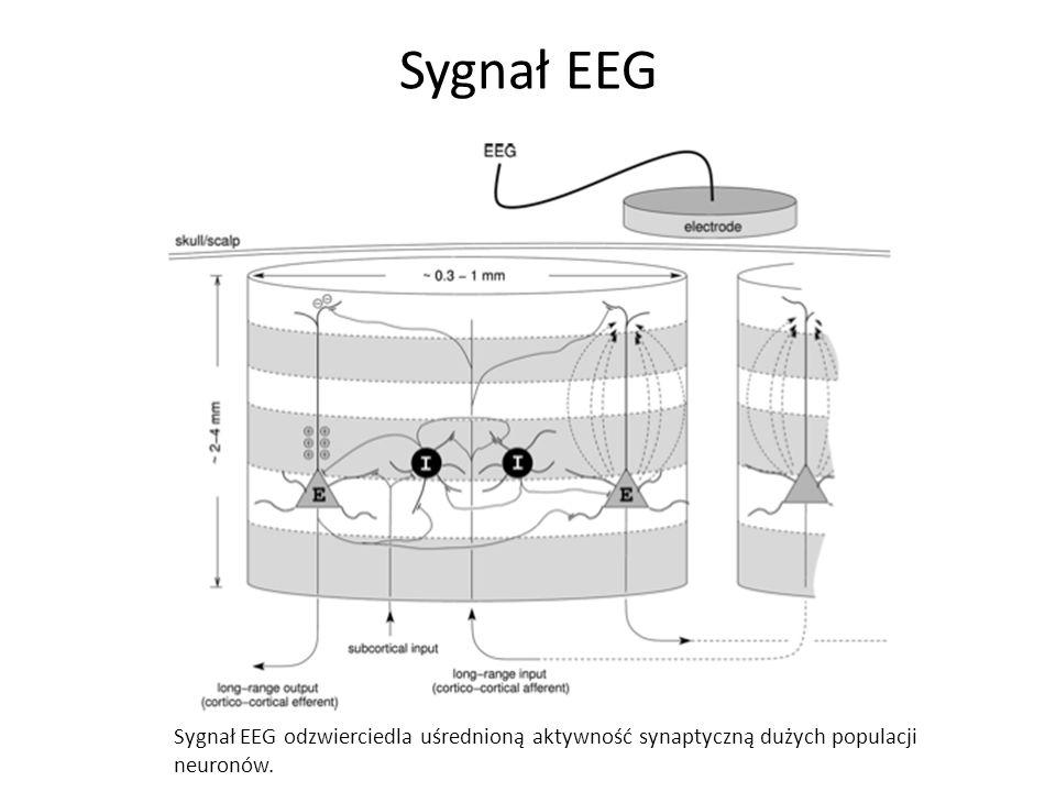 Sygnał EEG Sygnał EEG odzwierciedla uśrednioną aktywność synaptyczną dużych populacji neuronów.