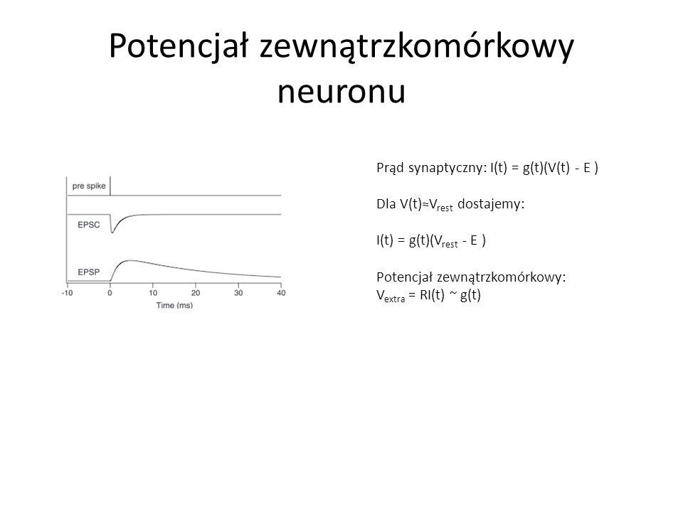 Potencjał zewnątrzkomórkowy neuronu Prąd synaptyczny: I(t) = g(t)(V(t) - E ) Dla V(t)≈V rest dostajemy: I(t) = g(t)(V rest - E ) Potencjał zewnątrzkomórkowy: V extra = RI(t) ~ g(t)