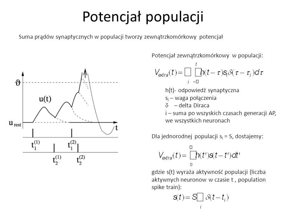Potencjał populacji Potencjał zewnątrzkomórkowy w populacji: Dla jednorodnej populacji s i = S, dostajemy: h(t)- odpowiedź synaptyczna s i – waga połą