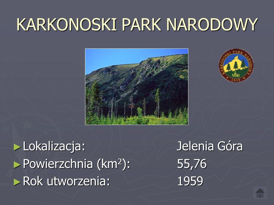 KAMPINOSKI PARK NARODOWY ► Lokalizacja: Izabelin ► Powierzchnia (km 2 ): 385,44 ► Rok utworzenia: 1959