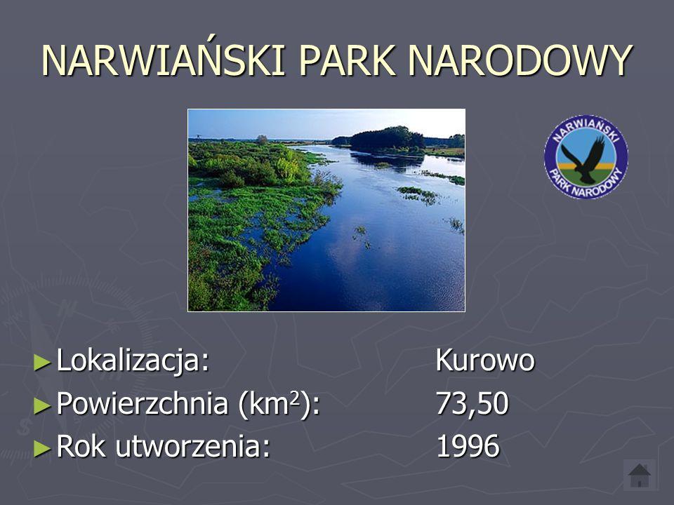 MAGURSKI PARK NARODOWY ► Lokalizacja: Krempna ► Powierzchnia (km 2 ): 194,39 ► Rok utworzenia: 1995