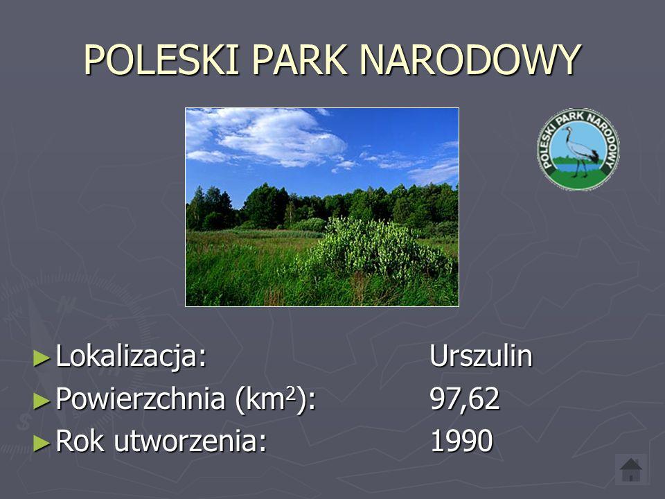 PIENIŃSKI PARK NARODOWY ► Lokalizacja: Krościenko ► Powierzchnia (km 2 ): 23,46 ► Rok utworzenia: 1932