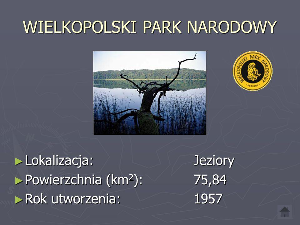 PARK NARODOWY UJŚCIE WARTY ► Lokalizacja: Chyrzno ► Powierzchnia (km 2 ): 80,38 ► Rok utworzenia: 2001