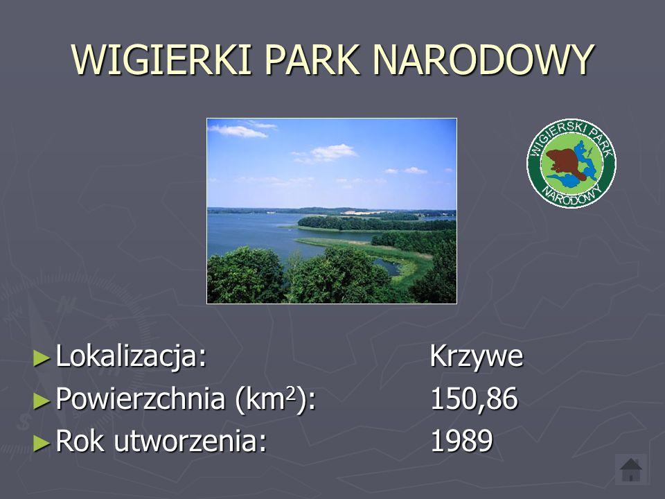 WIELKOPOLSKI PARK NARODOWY ► Lokalizacja: Jeziory ► Powierzchnia (km 2 ): 75,84 ► Rok utworzenia: 1957