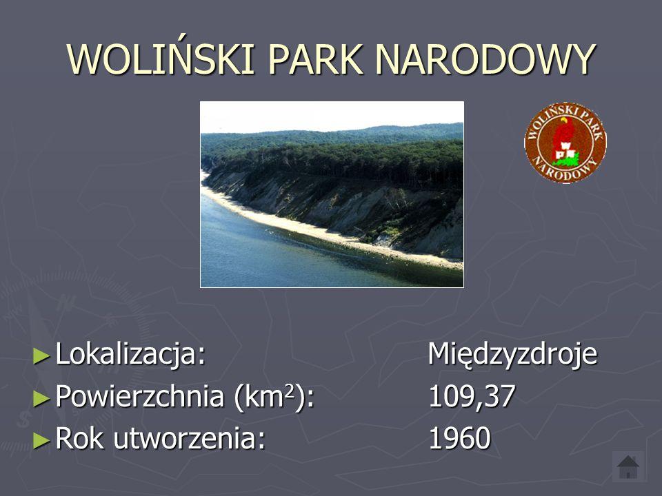 WIGIERKI PARK NARODOWY ► Lokalizacja: Krzywe ► Powierzchnia (km 2 ): 150,86 ► Rok utworzenia: 1989