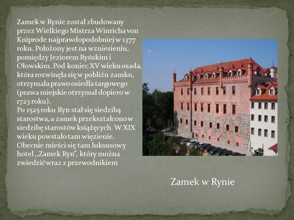Zamek w Rynie został zbudowany przez Wielkiego Mistrza Winricha von Kniprode najprawdopodobniej w 1377 roku. Położony jest na wzniesieniu, pomiędzy Je