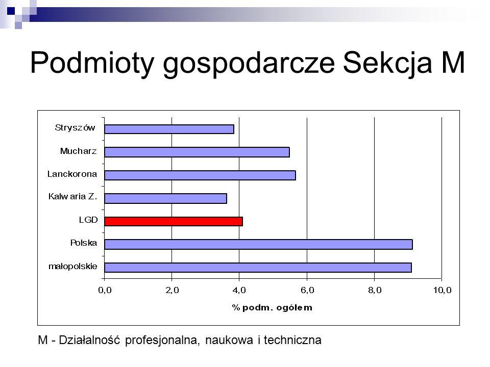 Podmioty gospodarcze Sekcja M M - Działalność profesjonalna, naukowa i techniczna