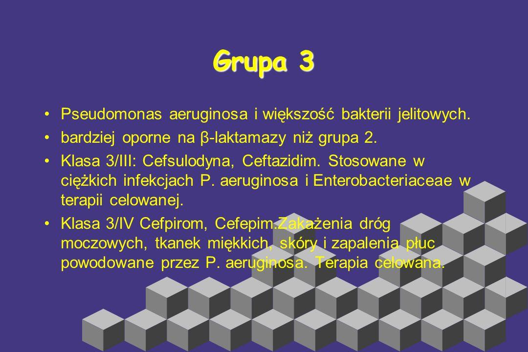 Klasa 2/II: Cefamandol (źle przenika do PMR), Cefuroksym (neuroinfekcje) Cefuroksym-aksetil, Cefonicid, Ceforanid i cefotiam (nie zarejestrowane w Pol