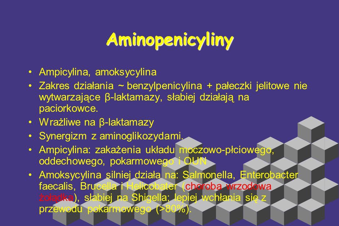 Penicyliny przeciwgronkowcowe nafcylina, penicyliny izoksazolilowe: kloksacylina, dikloksacylina, flukloksacylina. Metycylina ma znaczenie jedynie bad