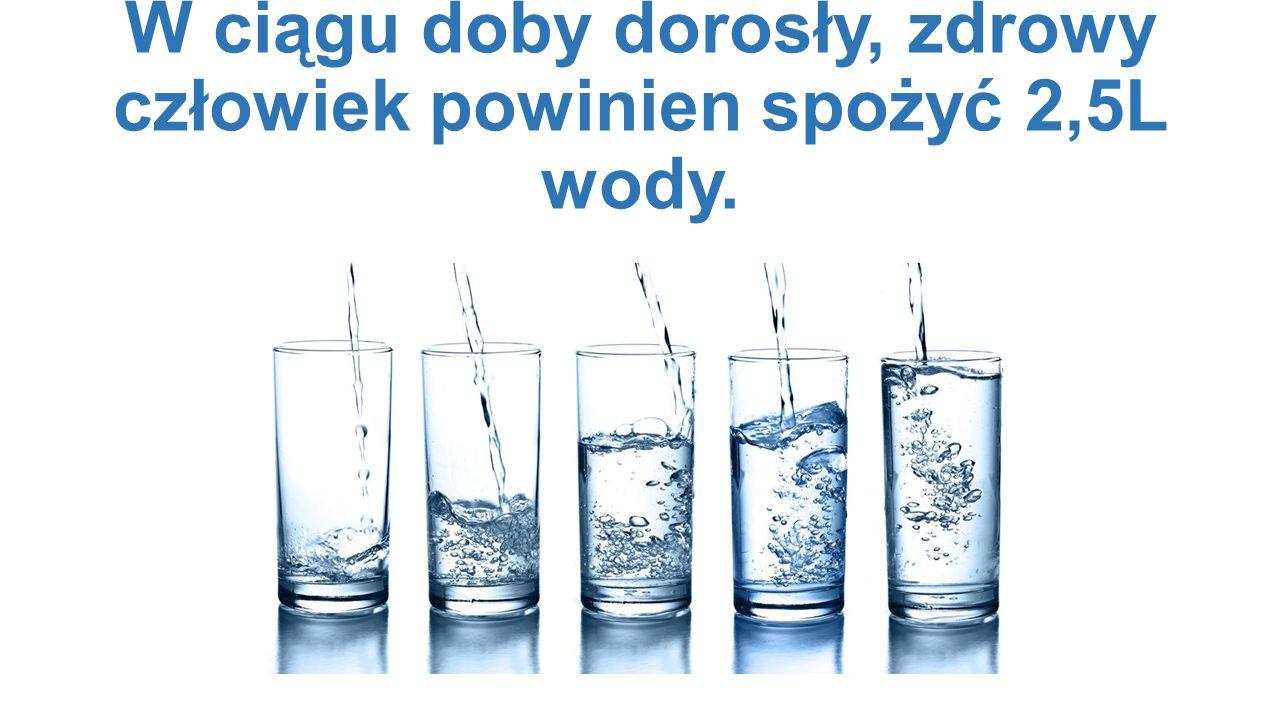 W ciągu doby dorosły, zdrowy człowiek powinien spożyć 2,5L wody.