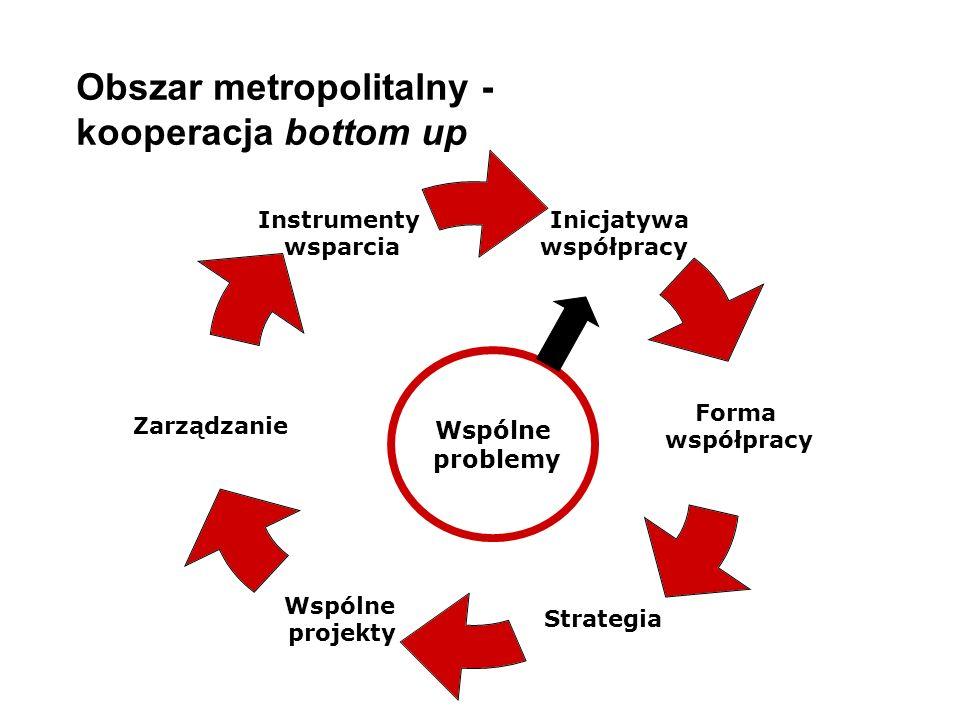 Obszar metropolitalny - kooperacja bottom up Inicjatywa współpracy Forma współpracy Strategia Wspólne projekty Zarządzanie Instrumenty wsparcia Wspólne problemy