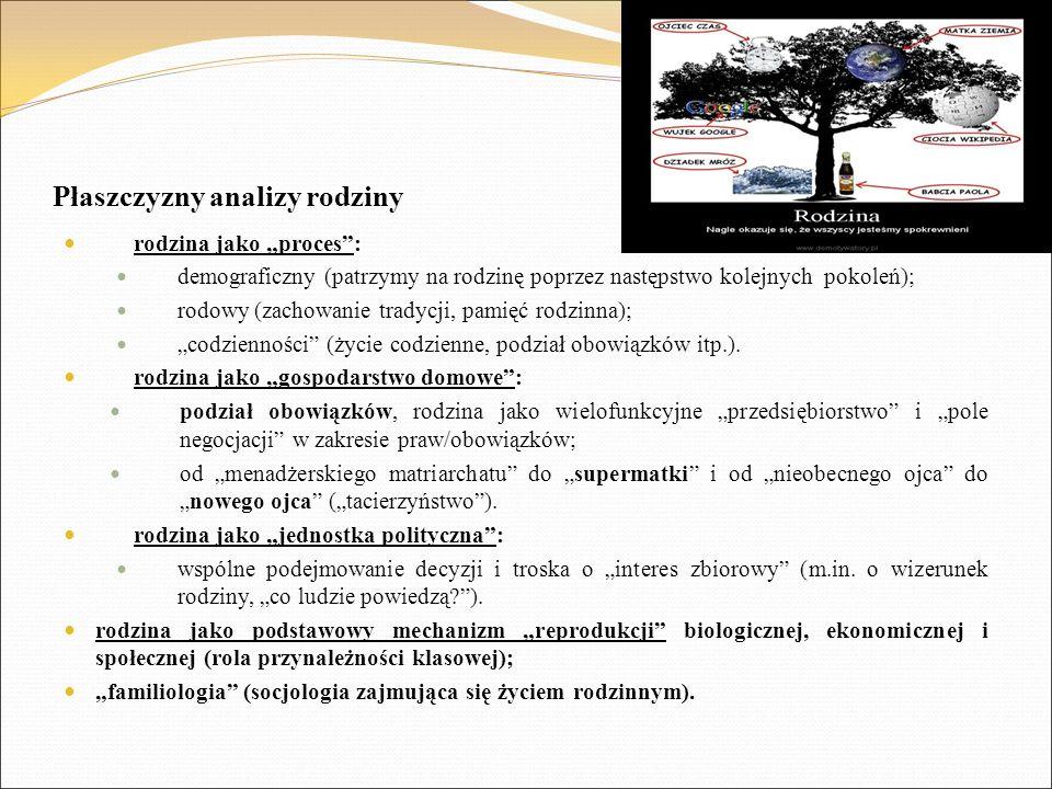 """Płaszczyzny analizy rodziny rodzina jako """"proces"""": demograficzny (patrzymy na rodzinę poprzez następstwo kolejnych pokoleń); rodowy (zachowanie tradyc"""