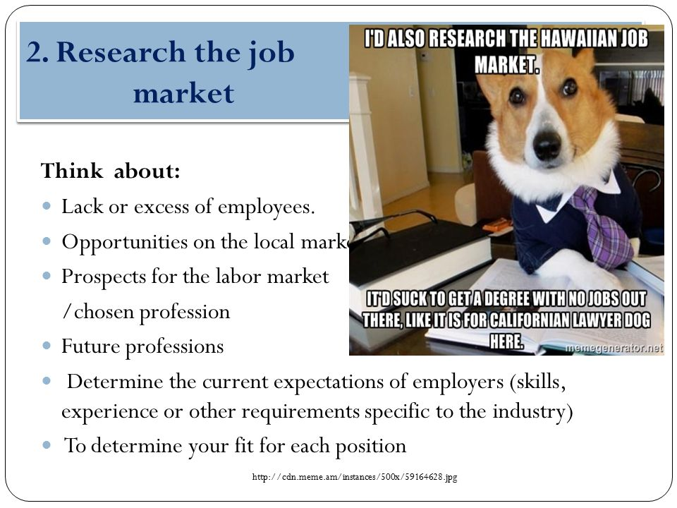2.Research the job market Think about: Lack or excess of employees.