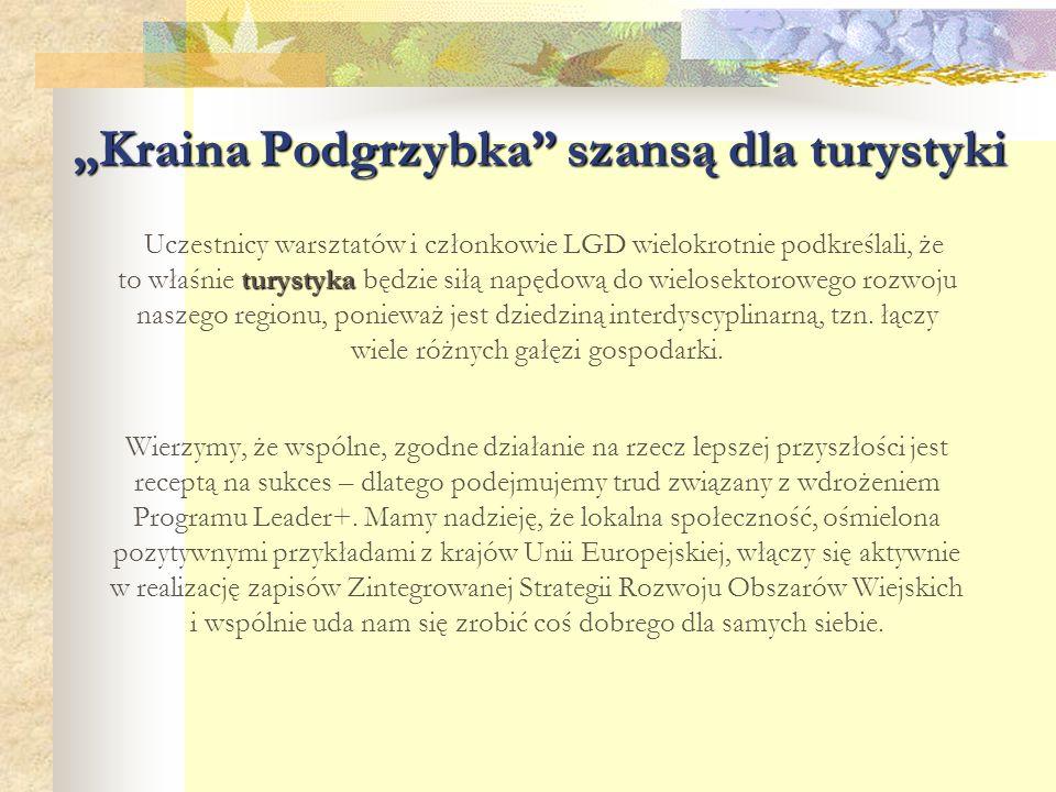 """""""Kraina Podgrzybka"""" szansą dla turystyki turystyka Uczestnicy warsztatów i członkowie LGD wielokrotnie podkreślali, że to właśnie turystyka będzie sił"""