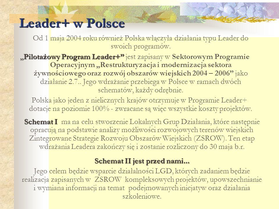 """Leader+ w Polsce Od 1 maja 2004 roku również Polska włączyła działania typu Leader do swoich programów. """"Pilotażowy Program Leader+"""" """"Pilotażowy Progr"""