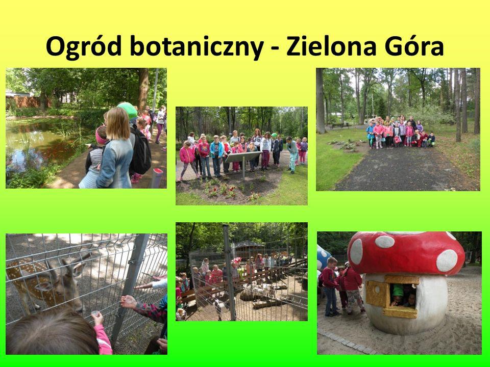 Ogród botaniczny - Zielona Góra