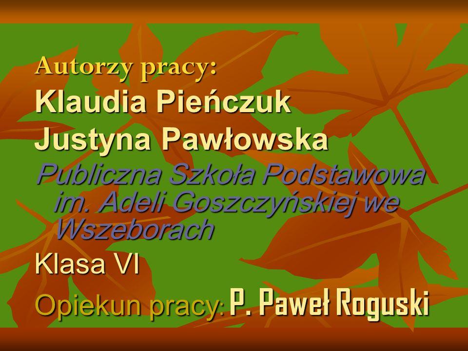 Autorzy pracy: Klaudia Pieńczuk Justyna Pawłowska Publiczna Szkoła Podstawowa im.