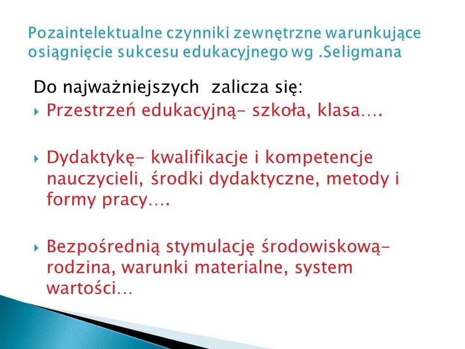 Do najważniejszych zalicza się:  Przestrzeń edukacyjną- szkoła, klasa….  Dydaktykę- kwalifikacje i kompetencje nauczycieli, środki dydaktyczne, meto