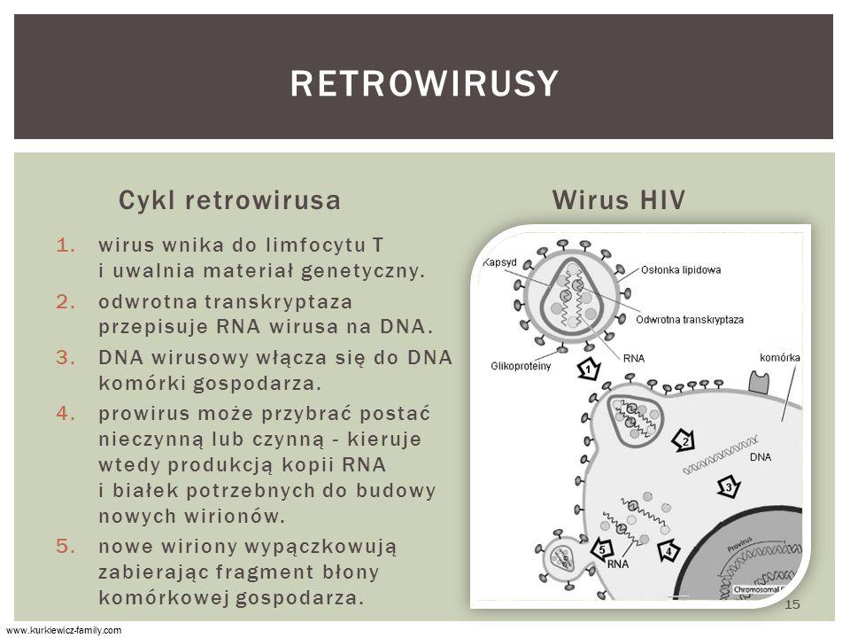 Cykl retrowirusa 1.wirus wnika do limfocytu T i uwalnia materiał genetyczny.