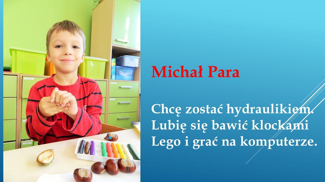 Michał Para Chcę zostać hydraulikiem. Lubię się bawić klockami Lego i grać na komputerze.