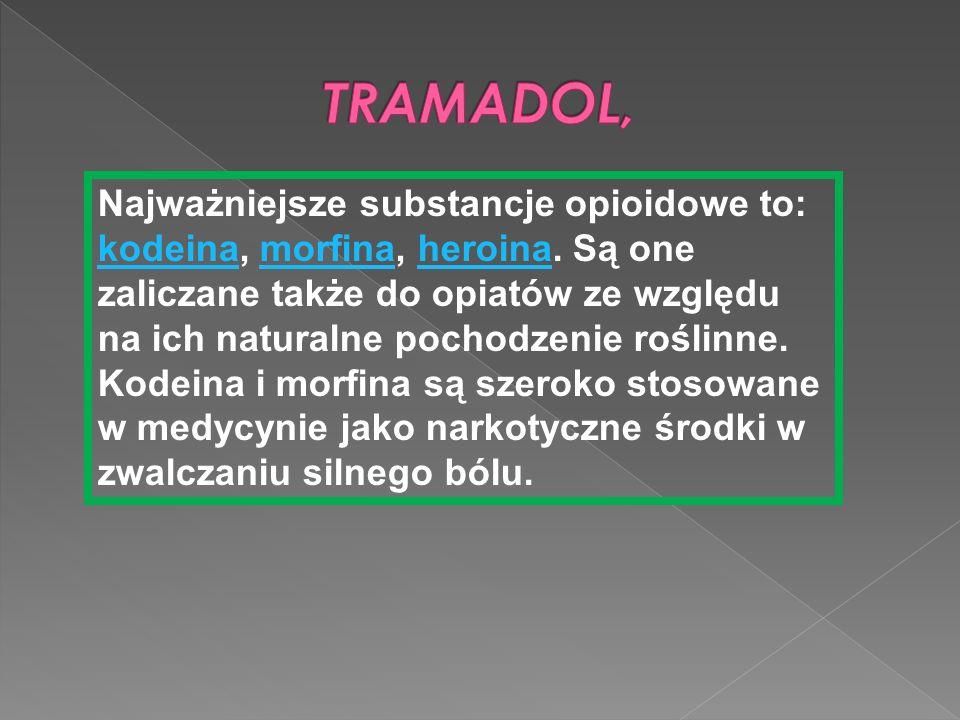 Najważniejsze substancje opioidowe to: kodeina, morfina, heroina. Są one zaliczane także do opiatów ze względu na ich naturalne pochodzenie roślinne.