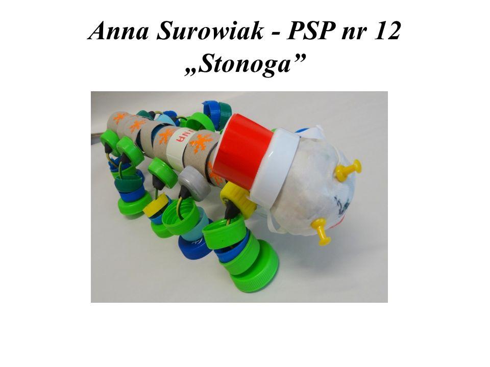 """Anna Surowiak - PSP nr 12 """"Stonoga"""""""
