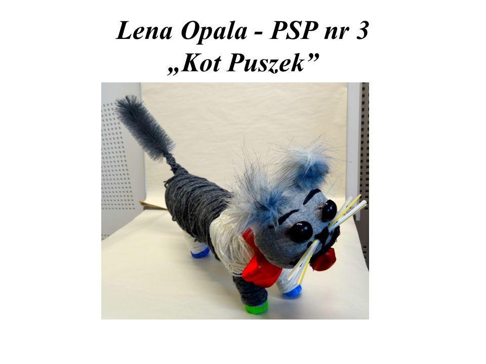 """Lena Opala - PSP nr 3 """"Kot Puszek"""""""