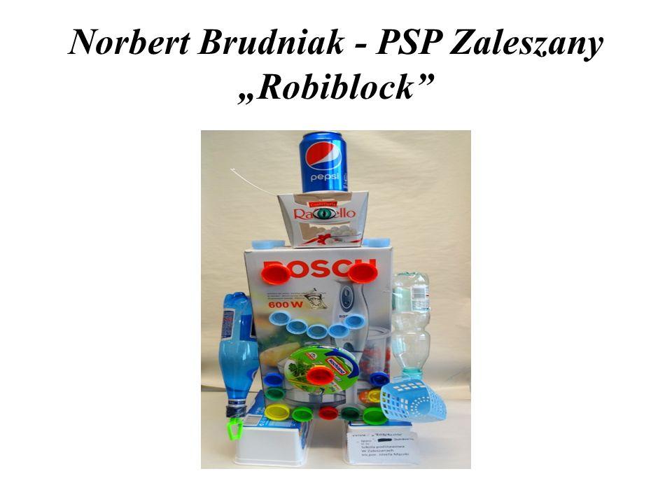 "Norbert Brudniak - PSP Zaleszany ""Robiblock"